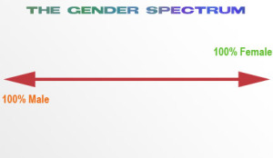 genderspectrum